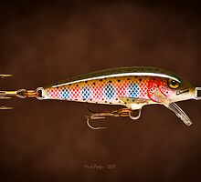 Finnish Minnow - Print by Mark Podger