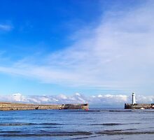 The Harbour of Donaghadee by Paulo Ferreira
