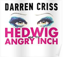 Darren Criss in Hedwig and the Angry Inch Poster