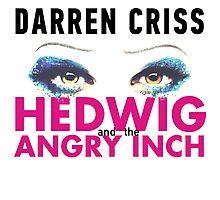 Darren Criss in Hedwig and the Angry Inch Photographic Print