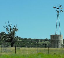 Old Windmill in Somervell County, Texas by Susan Russell