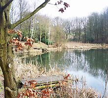 Fishing pond - Blackley Forest - Manchester by Claire Sidebotham