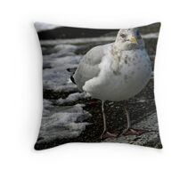 Winsome Wally........ Throw Pillow