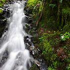 Spring Falls by DavesPhoto