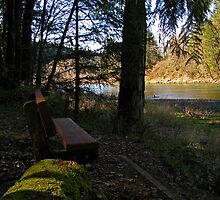 Bench by the River by bicyclegirl