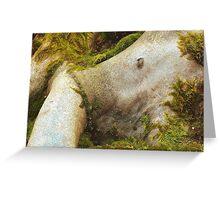 Creating nature Greeting Card