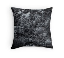 From cloud to snow to water Throw Pillow