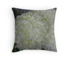 Balls of Beauty Throw Pillow