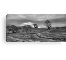 Separated by Stone Canvas Print