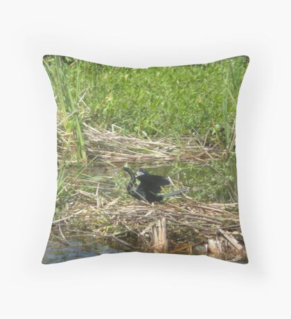 Sun Soaking Throw Pillow