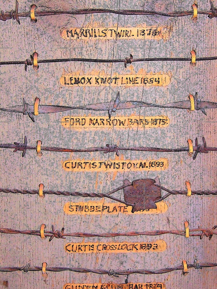 The Wire that Fenced the West by Betty  Town Duncan