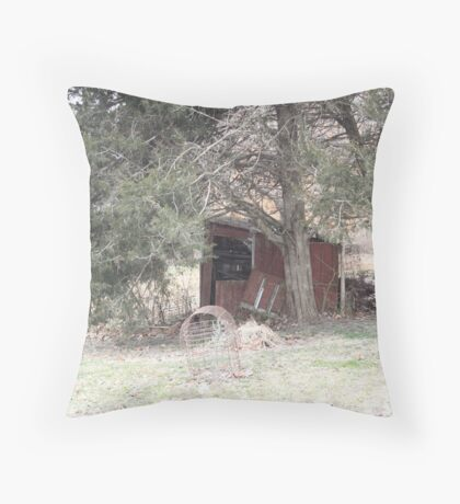 The Lonely Shed Throw Pillow