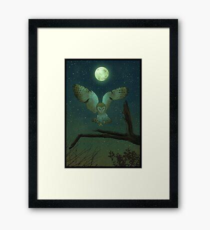 Owl Hunt Framed Print