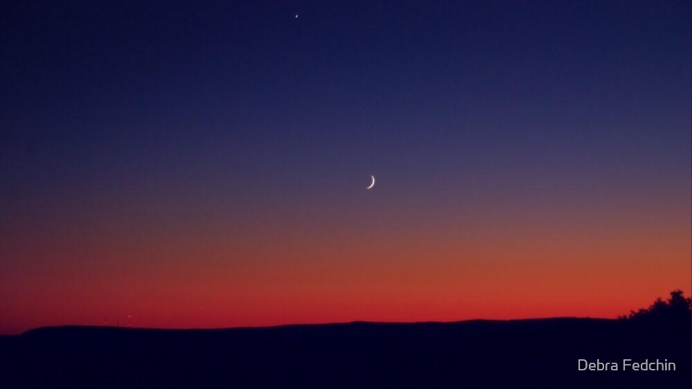 Twilight Waxing Crescent Zone by Debra Fedchin
