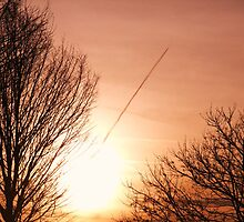 Plane Bursting Out of the Sun by MichelleRees