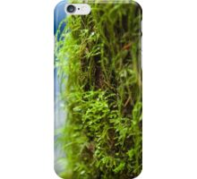 Colours of the Forrest iPhone Case/Skin