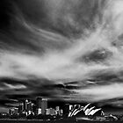 Sydney Harbour skyline by Sheila  Smart