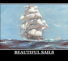 Beautiful Sails by william ballester