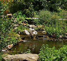 Pond in the Garden by Sandy Keeton