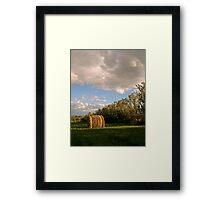 763 Framed Print