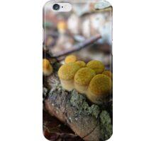Bird nest fungi iPhone Case/Skin