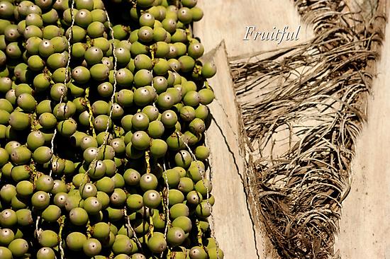 Fruitful by JpPhotos