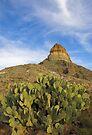 Cerro Castellan, Texas by Tamas Bakos