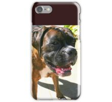 Waiting -Boxer Dogs Series- iPhone Case/Skin