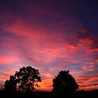 Dawn by Evita