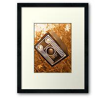 Brownie Days Framed Print