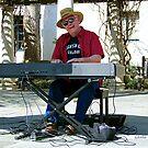 The Piano Man by Glenna Walker
