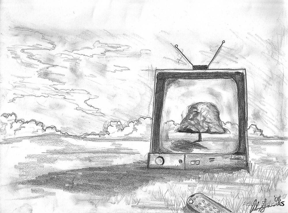 Reality TV by Adam  Simons