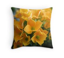 Mango Chutney Flowers Throw Pillow