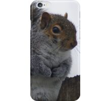 Oh So Cold iPhone Case/Skin