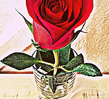 A Rose Given In Love by Rebecca Lamure