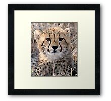 The World Is Scary  Framed Print