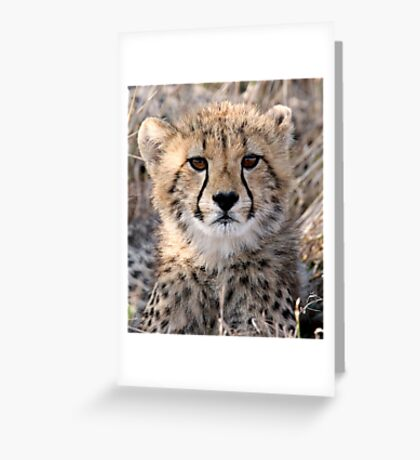 The World Is Scary  Greeting Card
