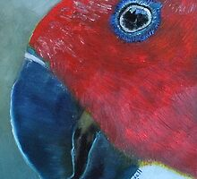 Female Eclectus - Original Oil on Wood Panel by Claudia Goodell