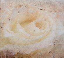 Grunge Rose by michellerena