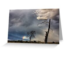 after the Storm... Greeting Card