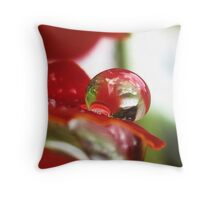 Red Delicious Throw Pillow