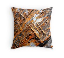 Beach rocks 13 Throw Pillow