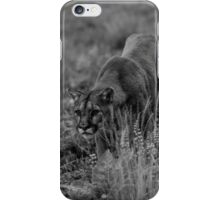 Mountain Lion Stocking iPhone Case/Skin
