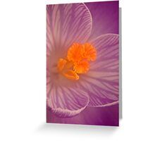 Deep Down ( Crocus) Greeting Card