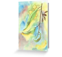 Gum Leaves with blossoms Greeting Card
