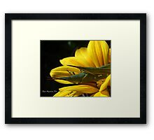 just nature... Framed Print