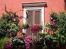 Flower adorned balcony... by hjaynefoster