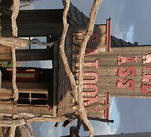 Wild Ass Saloon. by Mywildscapepics