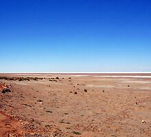 Lake Eyre by Stephanie Stengel | stelonature photography