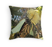 MONARCH IN HEAVEN! now gum flowers opening. Throw Pillow